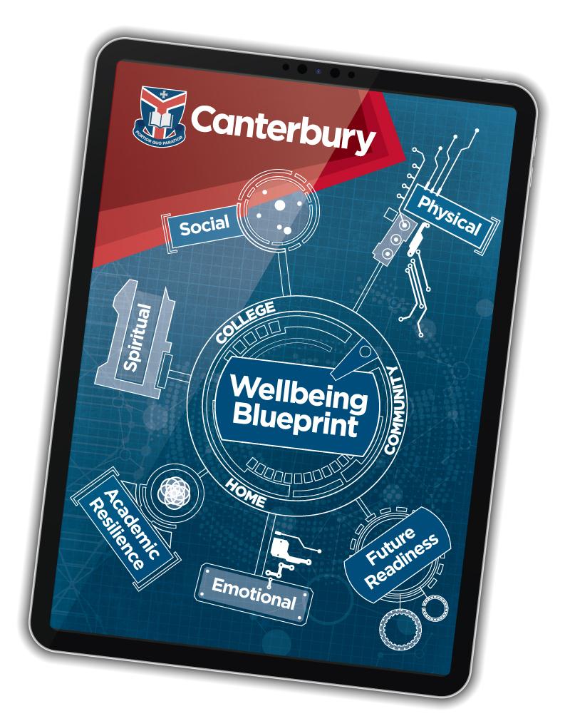 Wellbeing blueprint